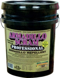 ARMADILLOW-SCRAM-230x300