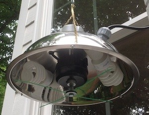 PATIO DECK LIGHT TRAP