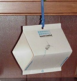 Cigarette Beetle Trap DT