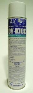 PT-Cykick