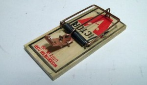 Mouse Trap Metal Trigger