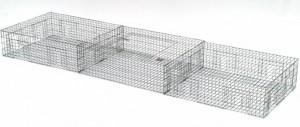 Pigeon Trap (large)
