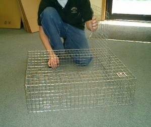 Pigeon Trap (small)