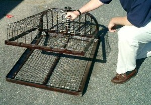 Beaver Easy Set Trap