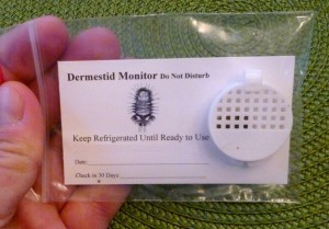 Dermestid Monitors