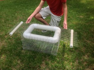 Turtle control and traps for the pond stream and lake for How to make a fish trap for big fish